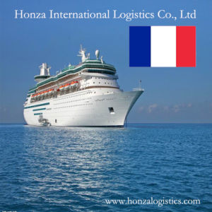 Sea/ Air Logistics/Shipping From Shenzhen/Guangzhou/Shanghai to France