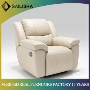 Foshan Shunde Longjiang Sailisha Furniture Co., Ltd.