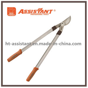 Garden Shears Orchard Tree Loppers Drop Forged Bypass Lopping Shear pictures & photos