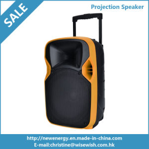 12 Inches Plastic Outdoor Digital PA Speaker with Projector