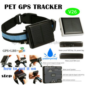 Long Standby Solar Powered GPS Pet Tracker with Waterproof V26 pictures & photos