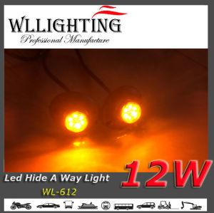 China 6PCS 1W Vehicle Hazard LED Eagle Light - China Hideaway Light ...