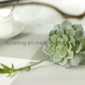 Decorative Plant Natural Touch Artificial Succulents Artificial Flower (SW17667)