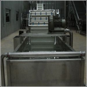 Fruit Washing Equipment