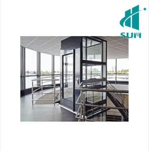 Luxury Home Elevator with Competitive Price pictures & photos