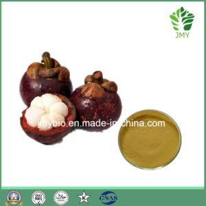 Alpha-Mangostin 20%-90% Mangosteen Extract Polyphenols 30%, Treating Tuberculosis