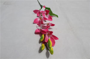 Good Quality Wholesale Cheap Artificial Orchid Phaleanopsis Flower for Wedding pictures & photos
