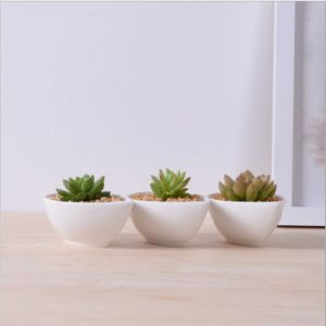 Adornment Characteristic Personality Desktop Small White Flowers Pot