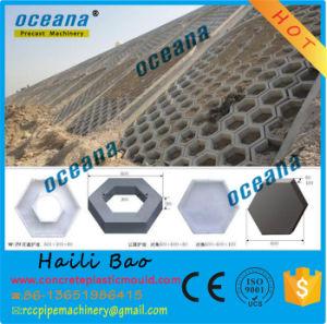 Hexagonal Concrete Hollow Pavers Blocks Plastic Moulds for Paving Stones