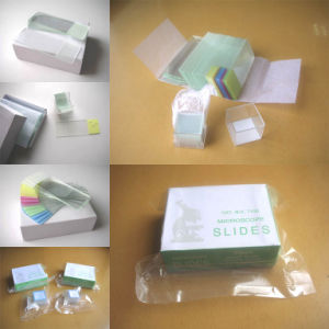 A701 Microscope Slides