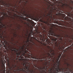 Copy Marble Design Glazed Polished Porcelain Wall/Floor Tile (SG61062G)
