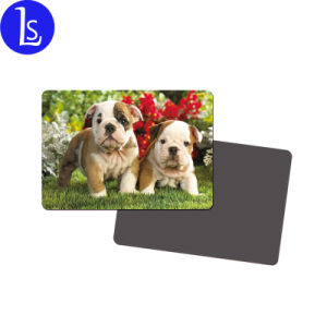 French Bulldog Fridge Magnet and matching keyring