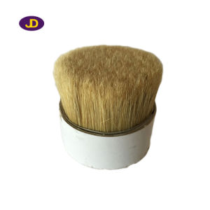 Chungking Z Quality White Boiled Pure Bristles pictures & photos