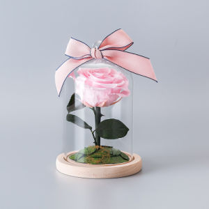 China Promotion Preserved Flower In Glass For Valentine Gift China