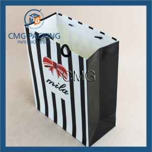 Luxury Paper Gift Bag for Shopping and Promotional (DM-GPBB-127) pictures & photos