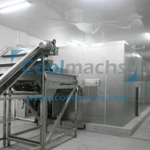 Fluidized IQF Freezer for Food pictures & photos