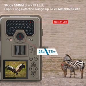 12MP HD 1080P Black IR Hunting Camera with 2′′ Color TFT LCD IP66 Waterproof with Detection Range up to 75FT pictures & photos