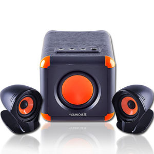 Good Quality 2.1 Multimedia PA Portable Speaker System