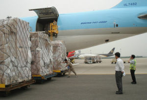 Cheap Air Freight From Shanghai to Frankfurt pictures & photos