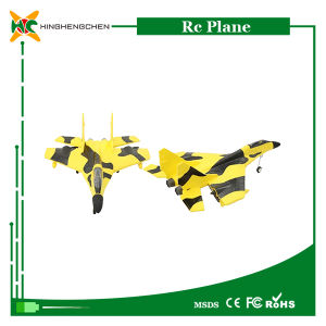 Wholesale High Imitation Material EPP RC Model Plane pictures & photos