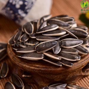 Chinese New Crop Sunflower Seeds 363 to Iran