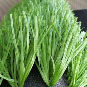 Olive Green 50mm Hot Sale PE Synthetic Grass for Soccer or Football Field From China