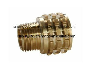 Brass Female Insert for PPR Pipe pictures & photos