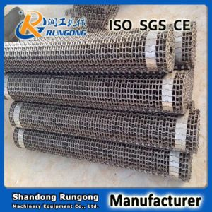 Metal Horseshoe Type Conveyor Belt for Frying Food pictures & photos