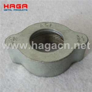 Ground Joint Interlocking Coupling Wing Nut pictures & photos