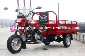 Sq150zh-D Cargo Tricycle, Vehicle