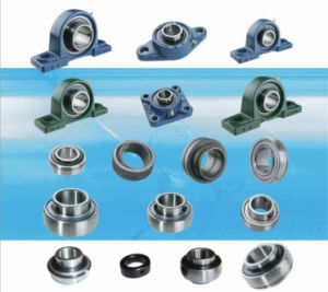 Pillow block bearing Spherical bearing Ball bearing units