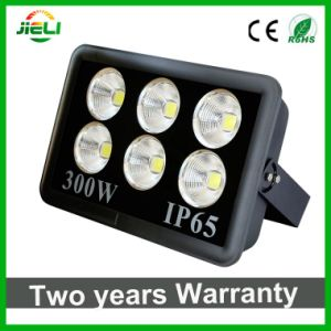 Newest Style 300W Project LED Outdoor Floodlight pictures & photos