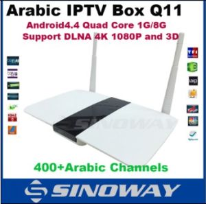 Q11 Android TV Box Quad Core Rk3128 Arabic IPTV No Monthly Payment Without  Monthly Pay