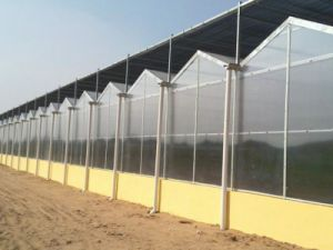The Latest Good Quality Greenhouse with Low Price pictures & photos
