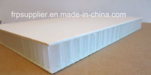 PP Honeycomb Cored FRP Composite Panel pictures & photos