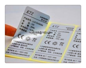Dumb Silver Dragon Adhesive Labels (SZRTL011) pictures & photos