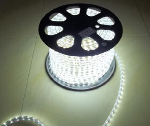Waterproof/5050 LED Strip/Flexible LED Strip/ Warm White