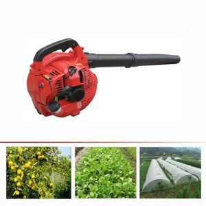 Eb260 Air Blower Dryer Leaf Blower pictures & photos