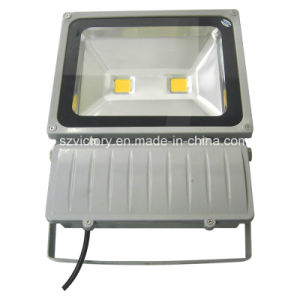 10W/20W/30W/50W/100W/150W/200W/300W/400W High Power Waterproof COB LED Flood Light with Ce&RoHS pictures & photos