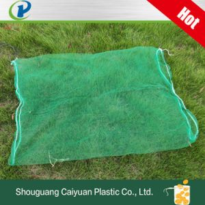 Green Color Reusable HDPE Drawstring Monofilament Mesh Bag Date Palm Mesh Net Bag for Date Protecting Covering