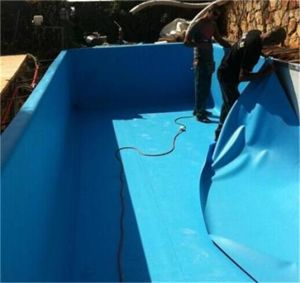 Best Materials for Your Pond Liner PVC Pond Liner (white, grey, blue) pictures & photos
