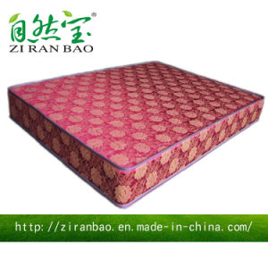 Cheap Price Continuous Thermal Spring Mattress (ZRB-856)