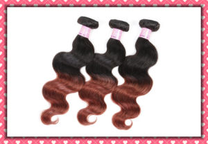 Cheap Price Ombre Color Hair Virgin Peruvian Body Wave 16inches pictures & photos