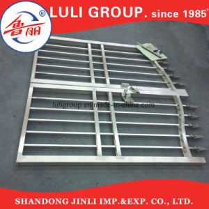 Galvanized  Iron  Wire Steel Sliding Gate Picket pictures & photos