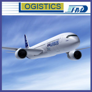 Express Logistics From China to American