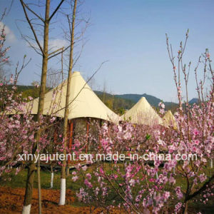Outdoor Glamping Luxury Tent for Hotel Tourism, Lodges, Romantic Resort