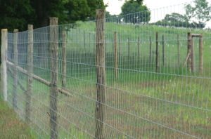 Fences for Deer Control