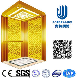 China Home Hydraulic Villa Elevator with Italy Gmv System