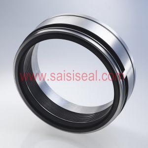 Burgmann Mfl65 Replacement (metal bellow seal, mechanical seal, pump seal) pictures & photos