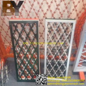PVC Coated Concertina Razor Wire pictures & photos